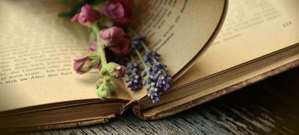 Mézeskalács feliratok, idézetek